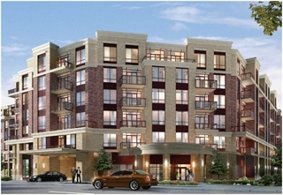 Primary Picture of The Essential Condos