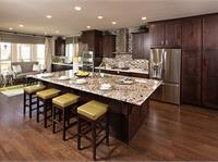 Interior photo of The Woodlands: Canopy Green in Creekside Park